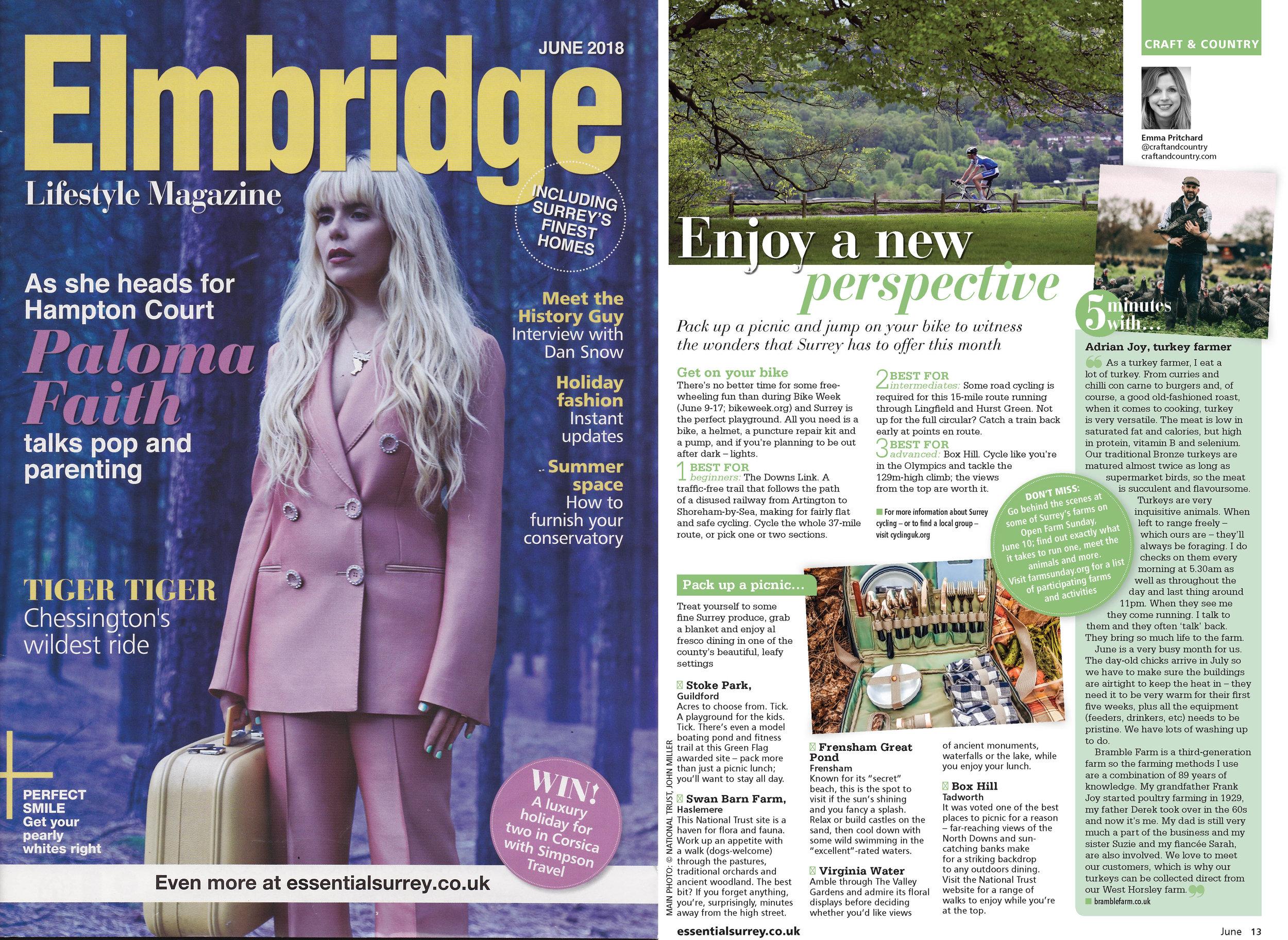 Elmbridge lifestyle magazine June 2018 Essential surrey Bramble Farm Turkey interview.jpg