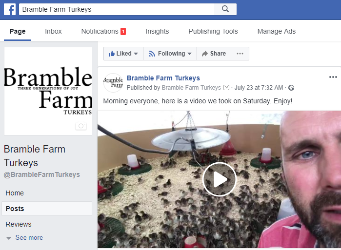 watch the video of the turkey chicks in week 1 on the farm