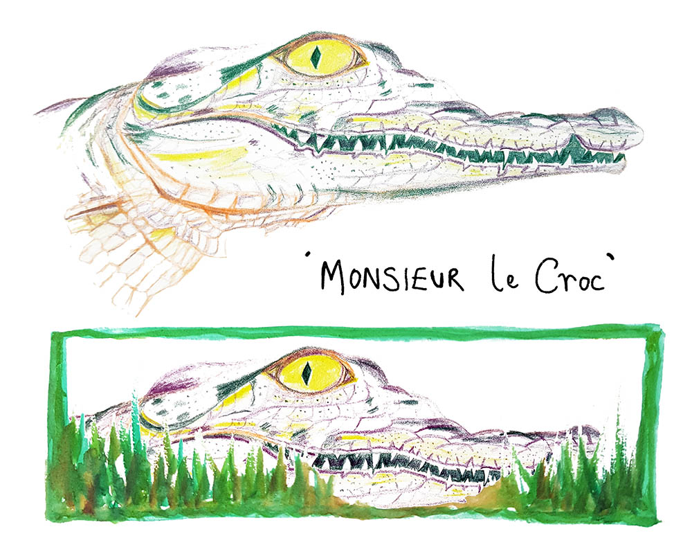 Monsieur Le Croc illustration for MATS Bootcamp 2018, Rebecca Johnstone