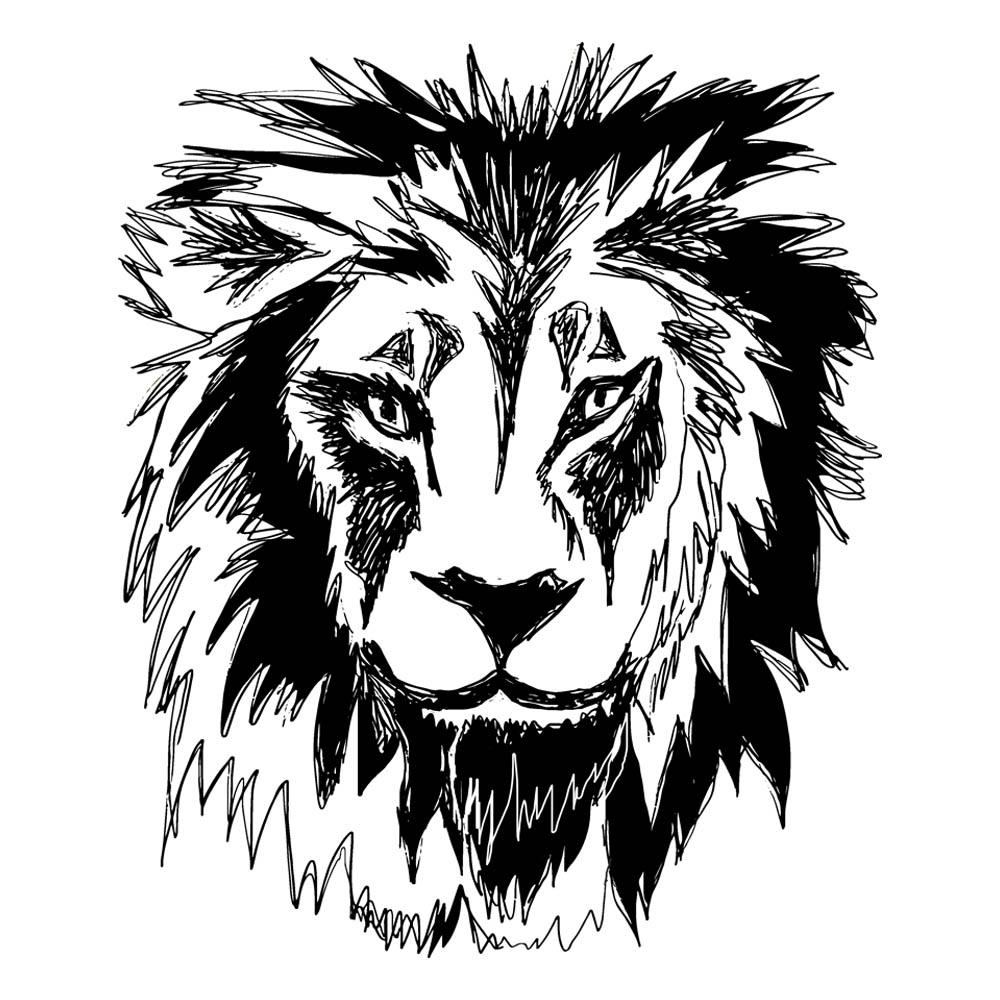 Lion Sketch by Rebecca Johnstone