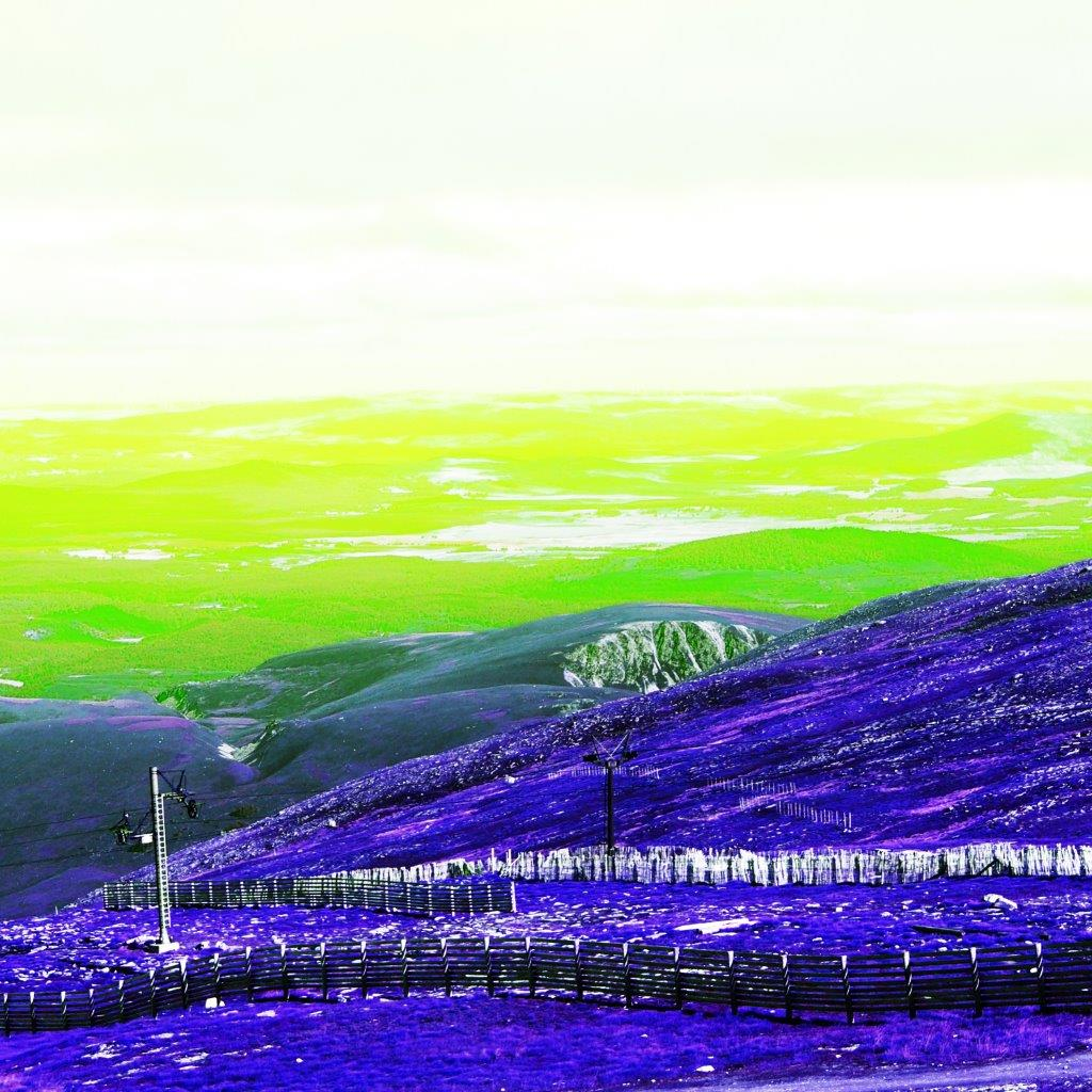 Rebecca Johnstone Cairngorms - Purple + Lime