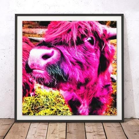 Rebecca Johnstone Highland Cow Pink - Square Print