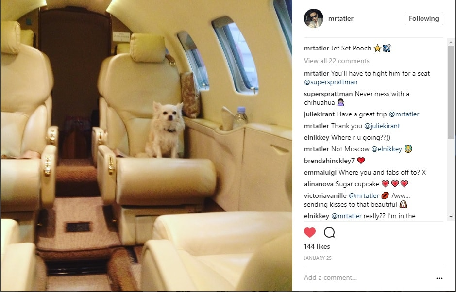 @mrtatler's chihuahua Fabio on-board a SuperFly private charter to Nice, France #JetSetPooch