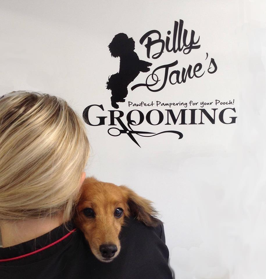 Billy jane's grooming - A gentle approach to dog grooming,in our Home from Home environment salon.