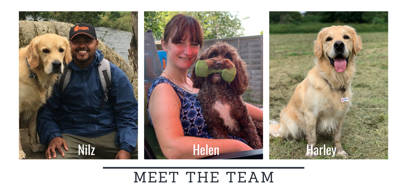 Nilz_and_Harley_meet_the_team