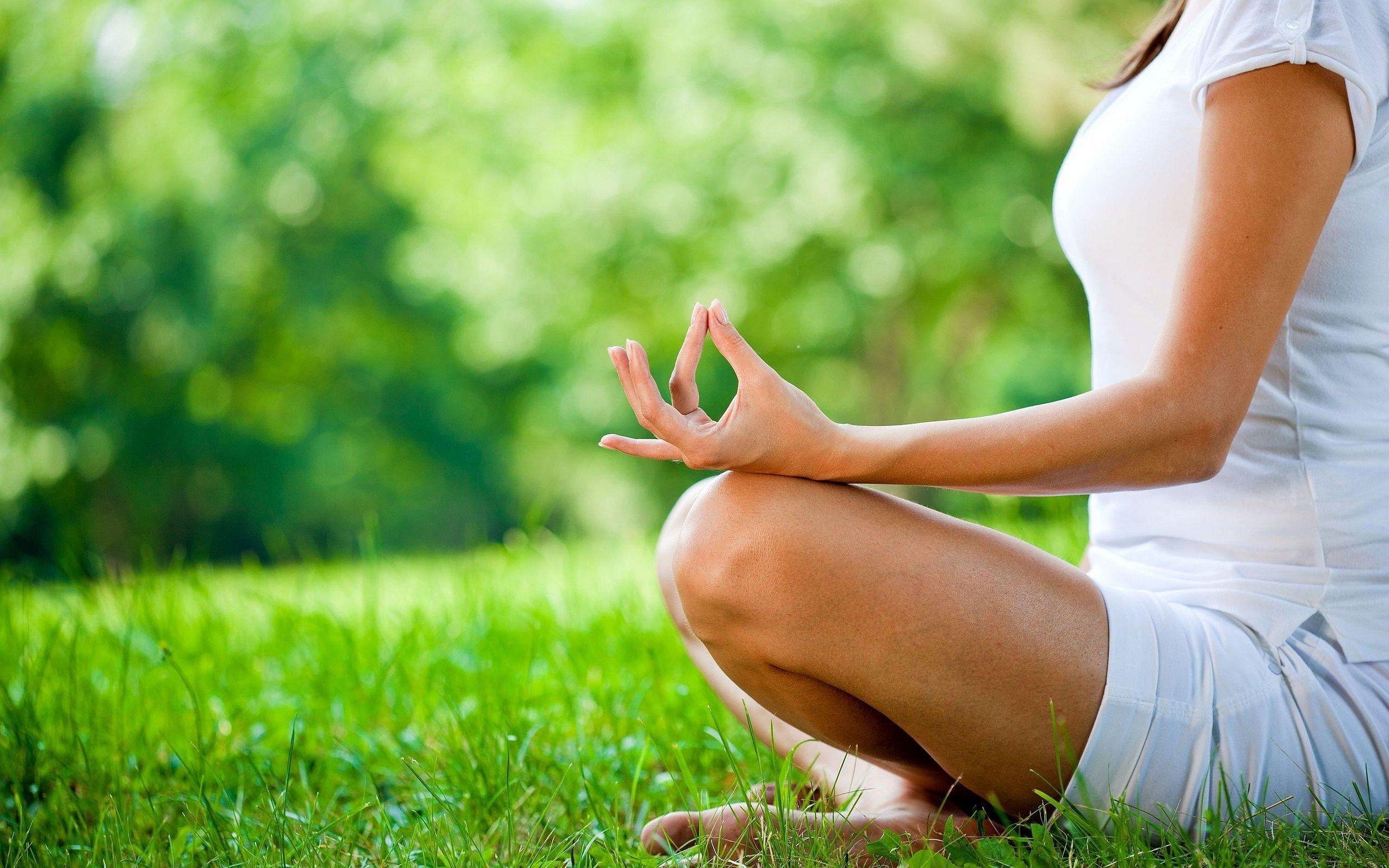 Image Credit: Organic Lifestyle Magazine