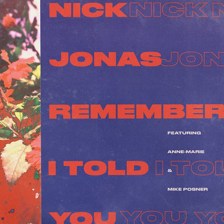 Remember I Told You - Nick Jonas
