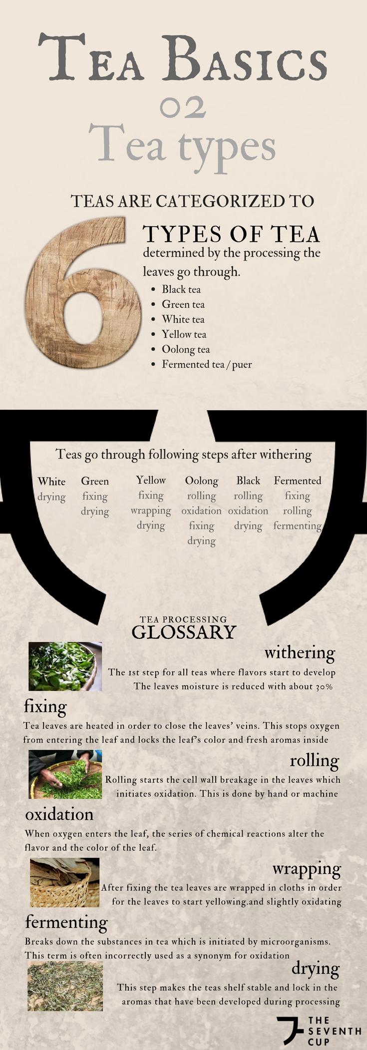 Tea Basics.jpg