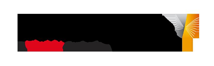 WDF Logo microsite.png