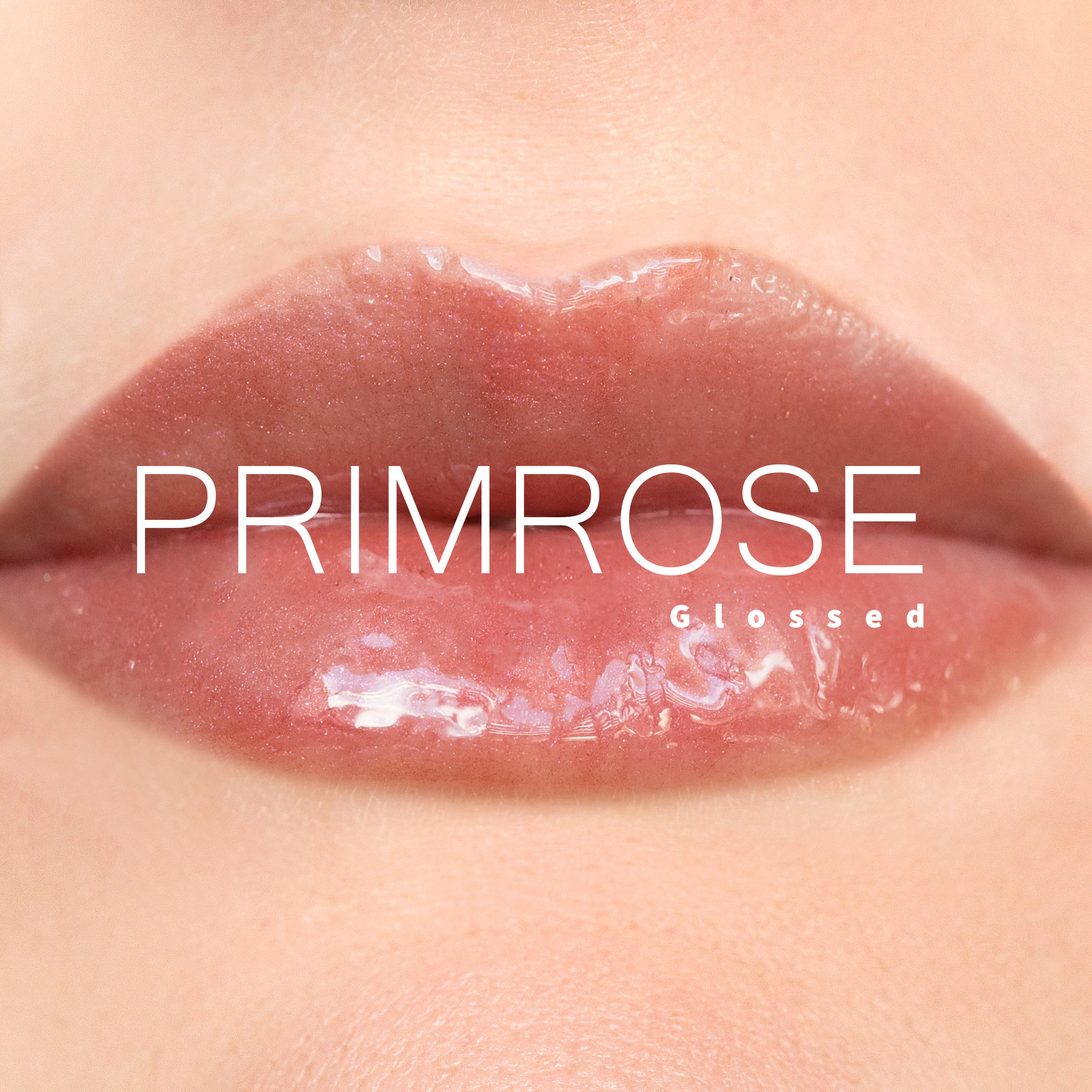Primrose7.jpg