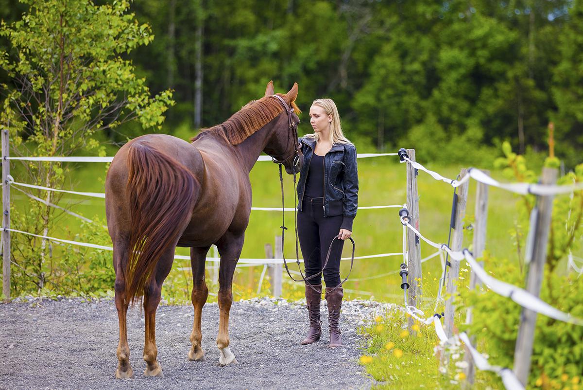 Horse-Walking-Sincerus-Leadership.jpg