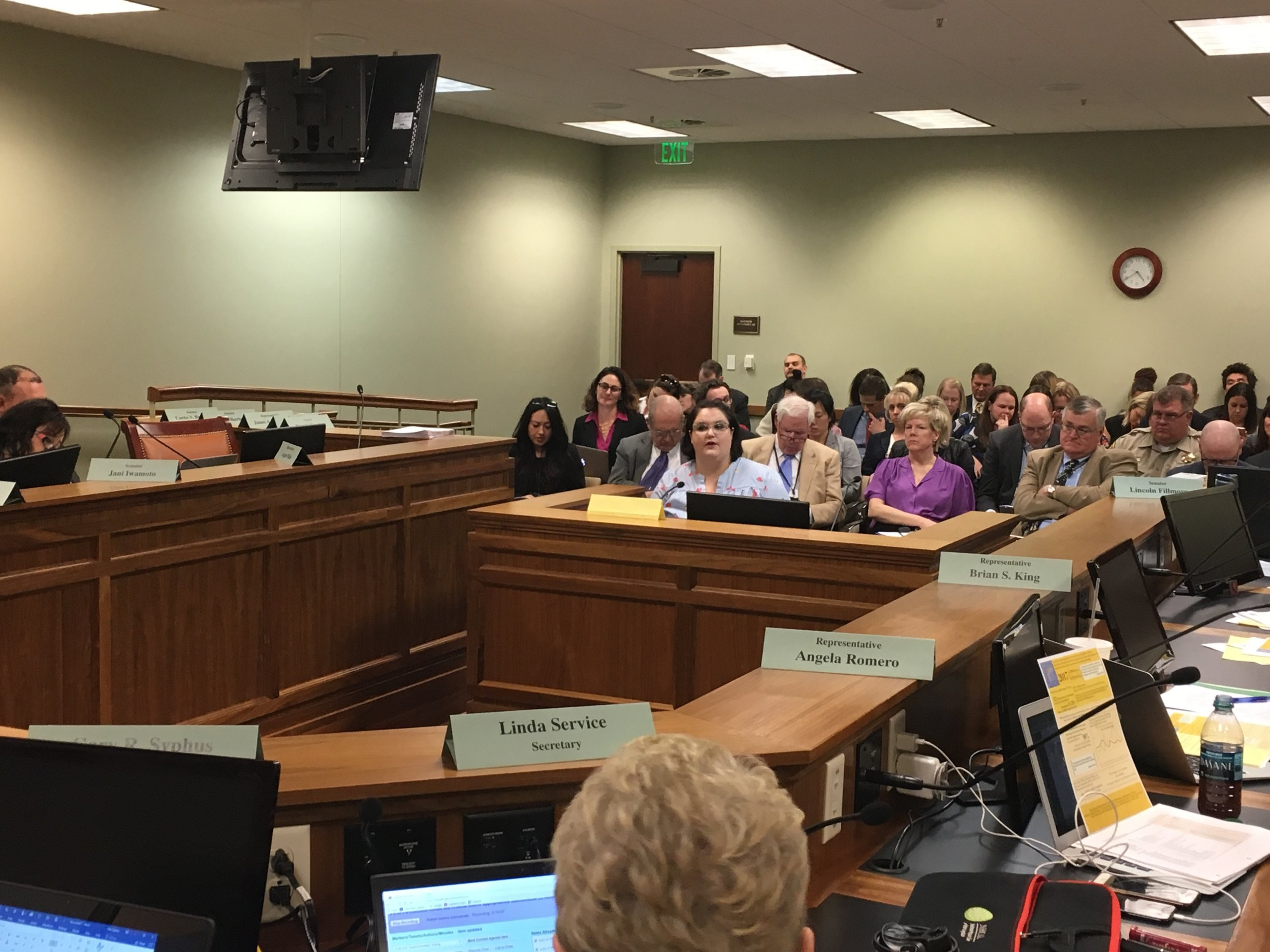 Rape Recovery Center (RRC) Executive Director, Mara Haight, testifying on the RRC's state funding request.