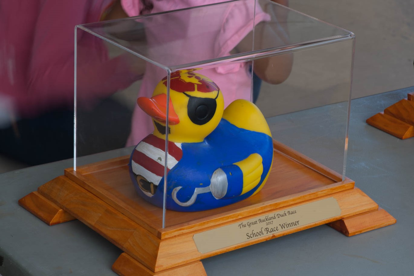 11.45am - PRIZE-GIVING    - Winners of the Business & School races & the Best-Dressed ducks from the same races will be presented with their ducks in these gorgeous presentation cases to take away, keep & display pride of place    - Winners of the Business Race & School races will also choose another great prize to take home    - Winners of the Everybody Race will take home Westfield vouchers