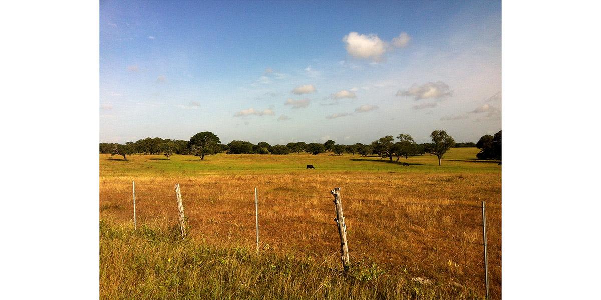 2bar_Ranch 1.jpg