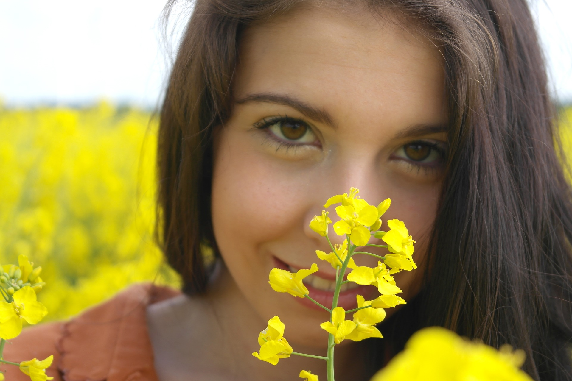 oilseed-pixabay-2426464_1920.jpg