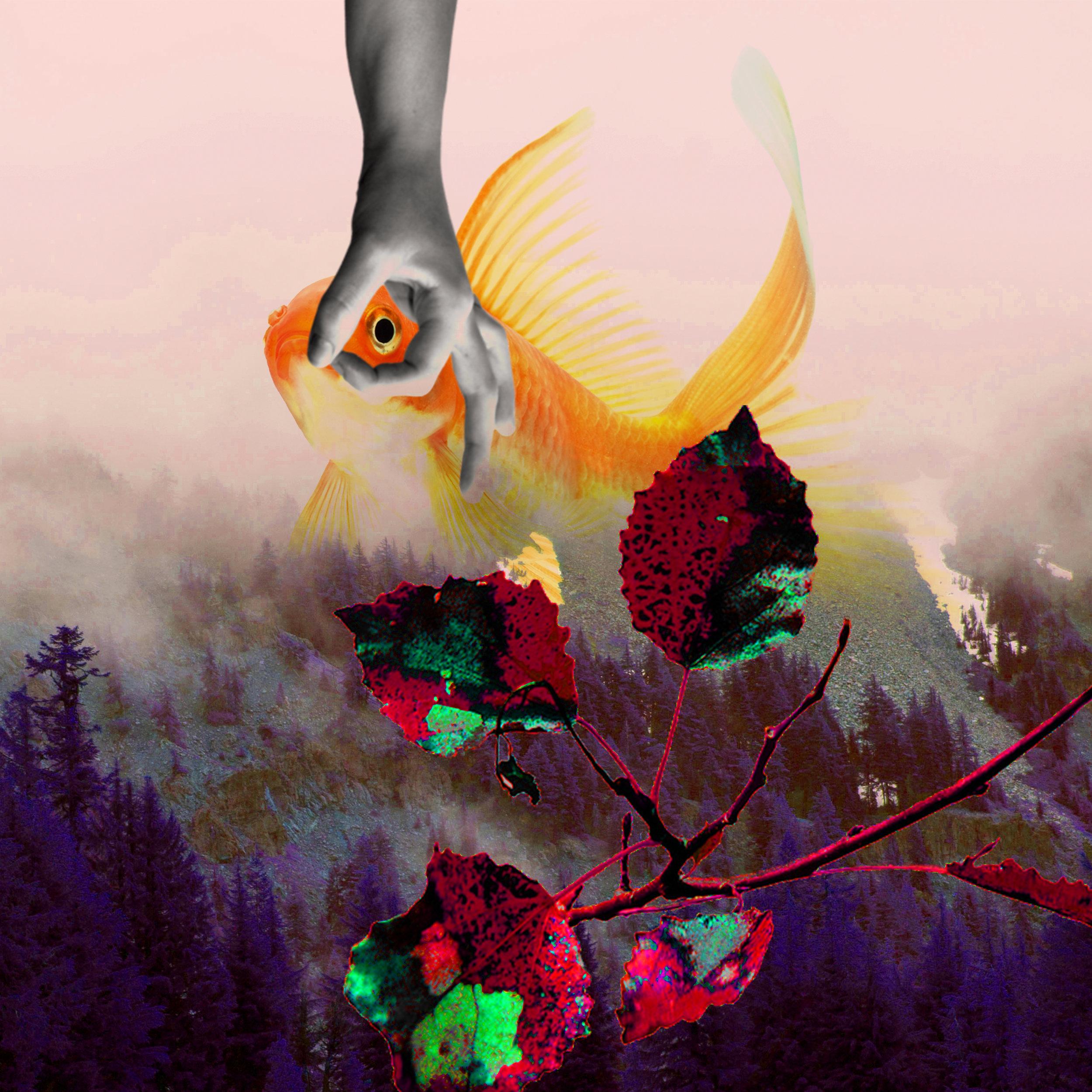 Volt's Canvas - 10x10%22 - aquatic forest.jpg