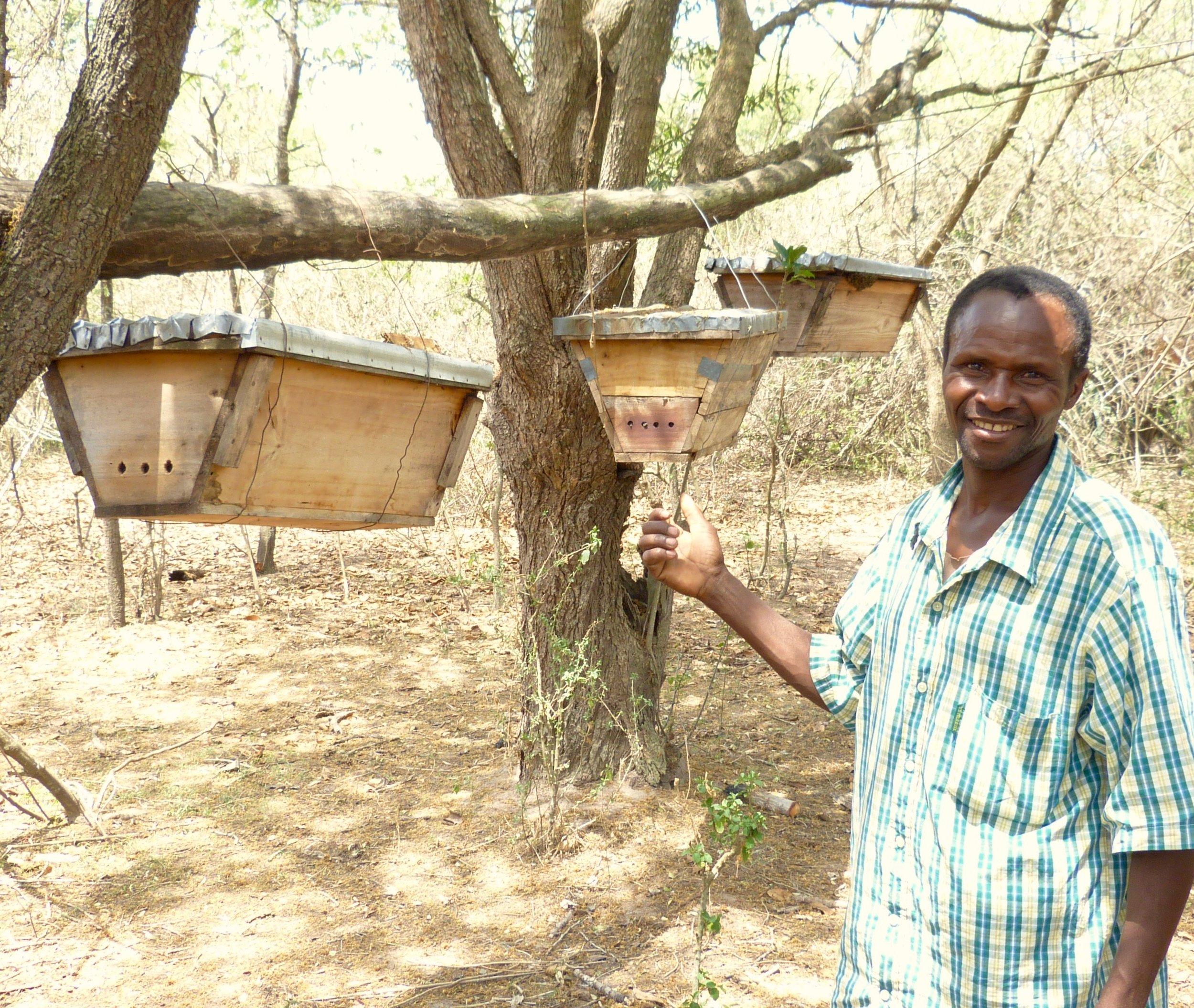 Yohana Beekeeping and K2N