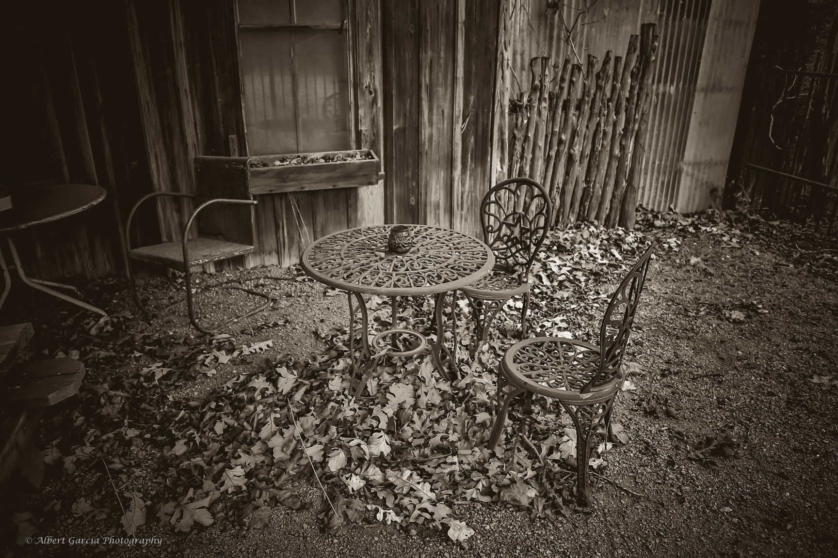 grape town -96.jpg