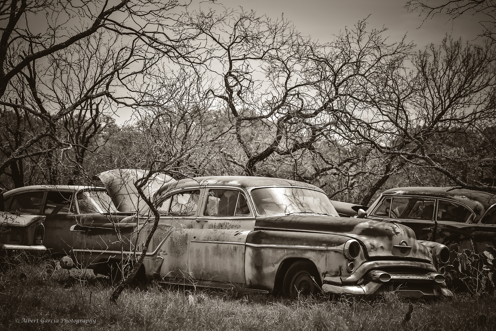 old cars.jpg