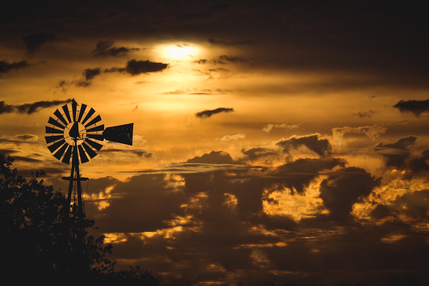 windmill ss.jpg