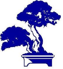 BLUE BONSAI.jpg