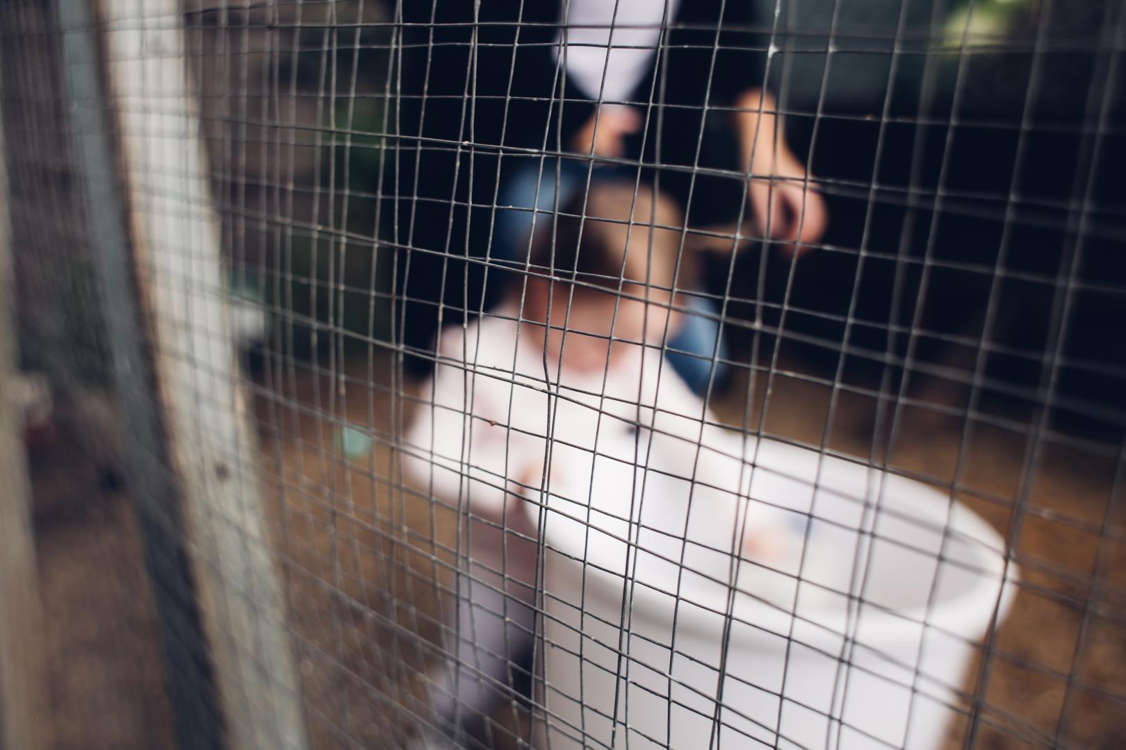 54 ormond newborn photographer.jpg