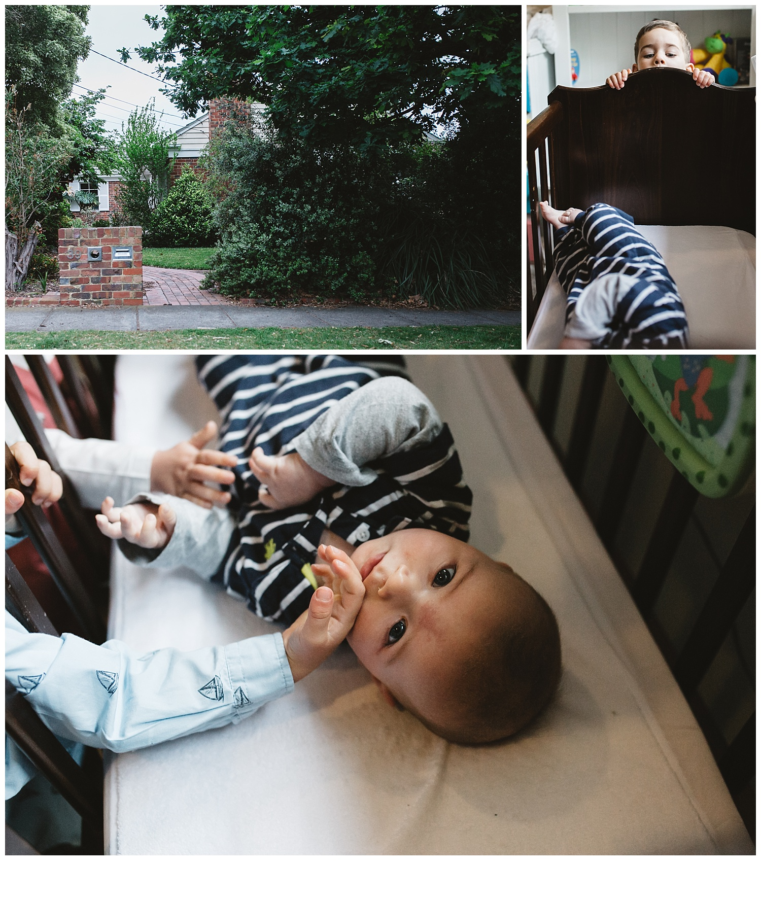 mentone toddler and family photography