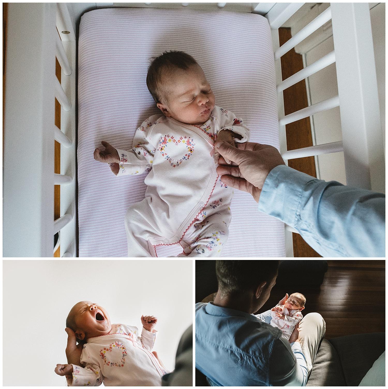 2. newborn portrait bayside.jpg