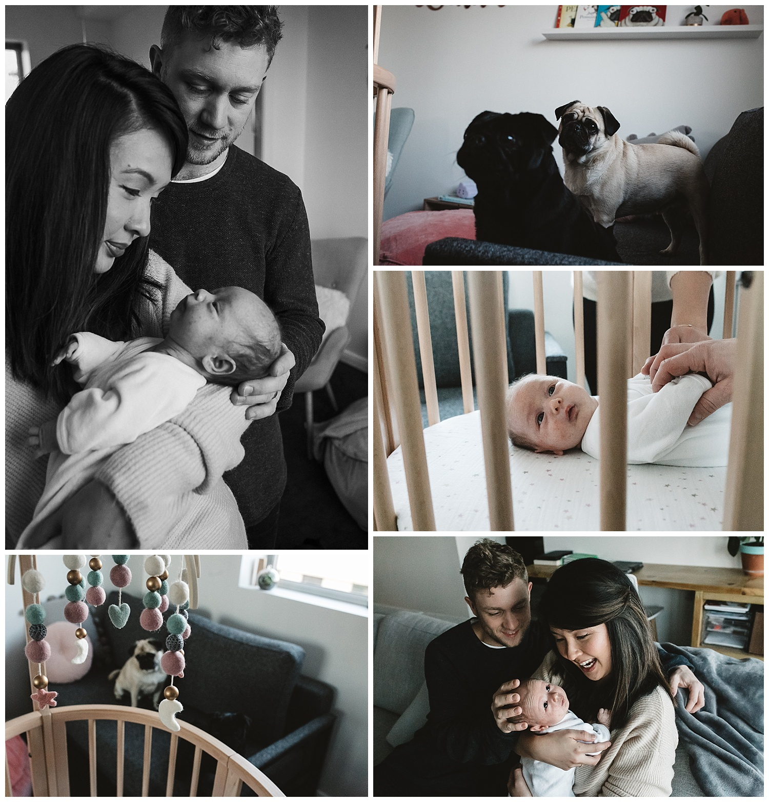 melbourne newborn photography family feeding small baby near cot