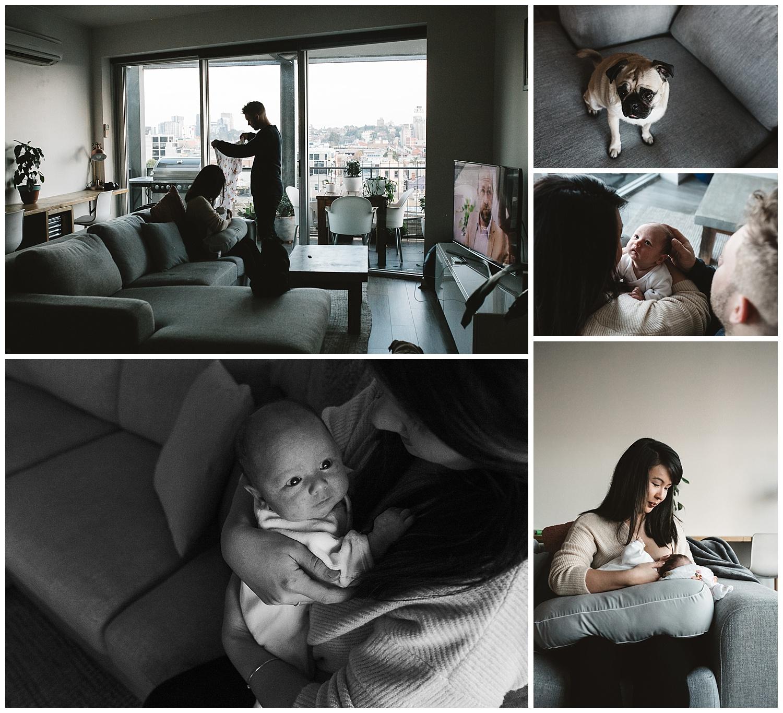 south yarra todller and newborn portrait photographer