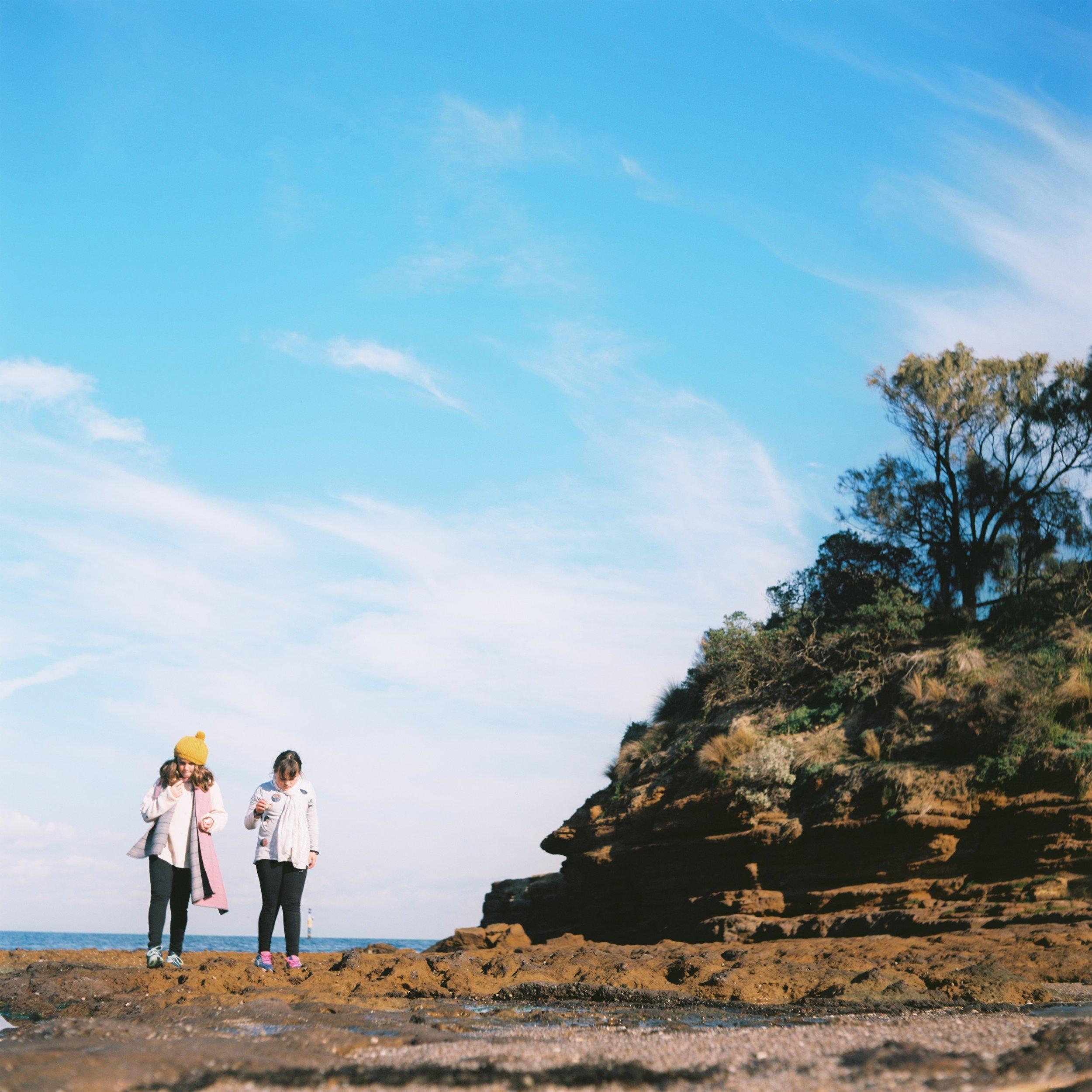 sandringham beach walk and trail walk with children
