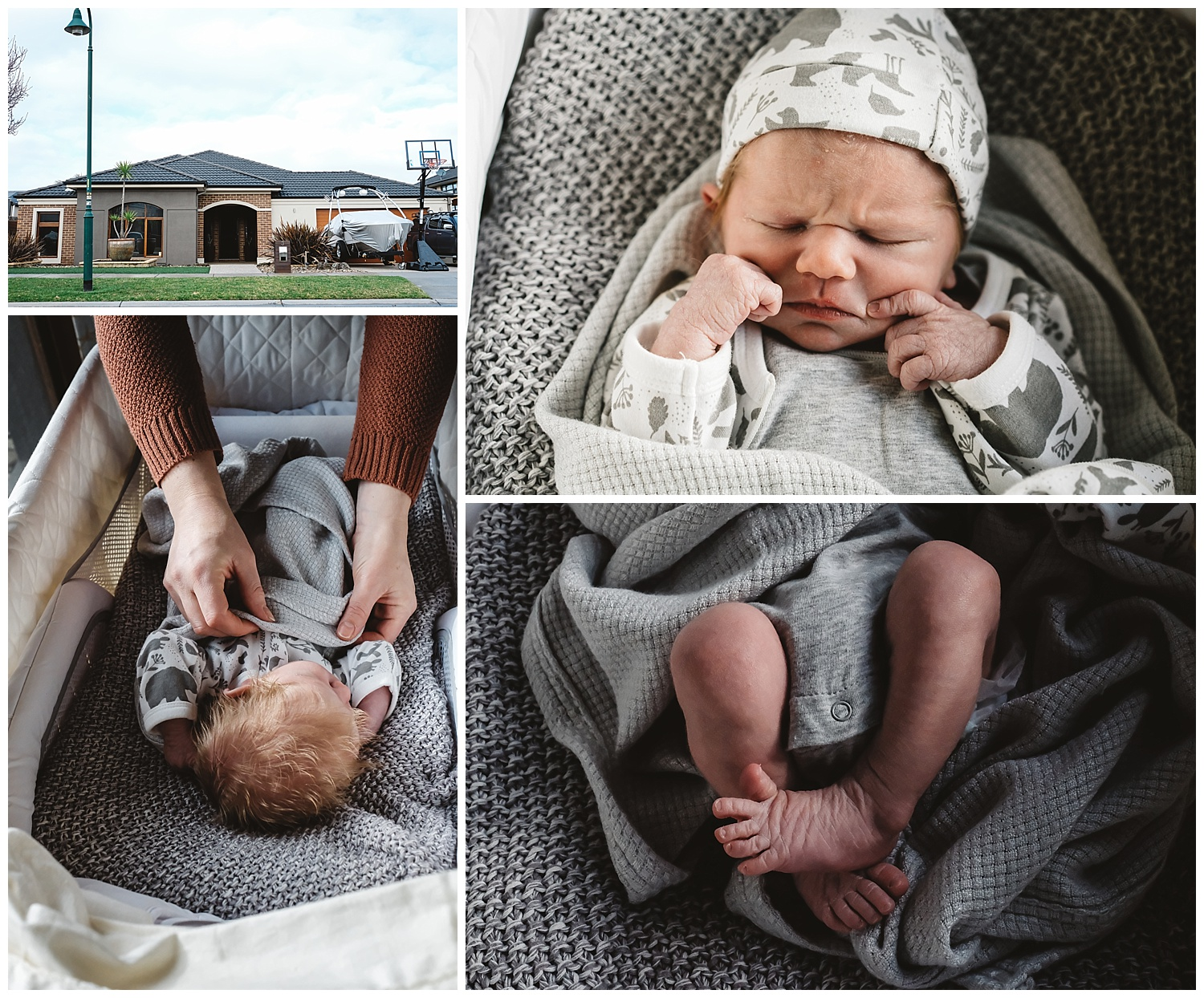 the early days of a newborn at home in rosebud