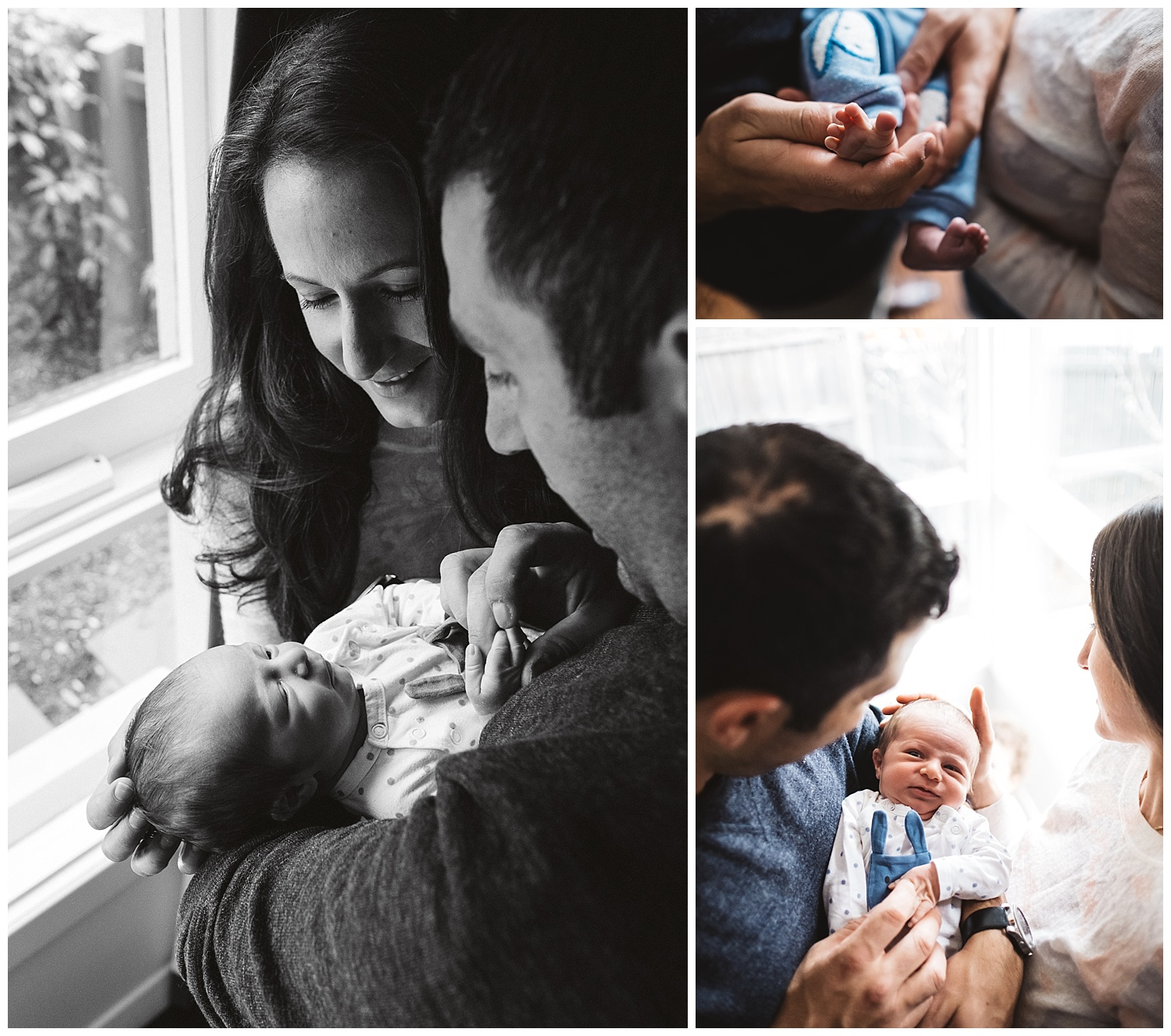 sandringham lifestyle family photography and pregnancy photos
