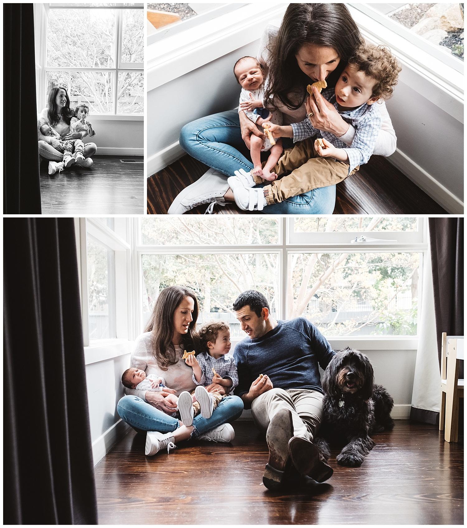 malvern east family portraits and newborn photos