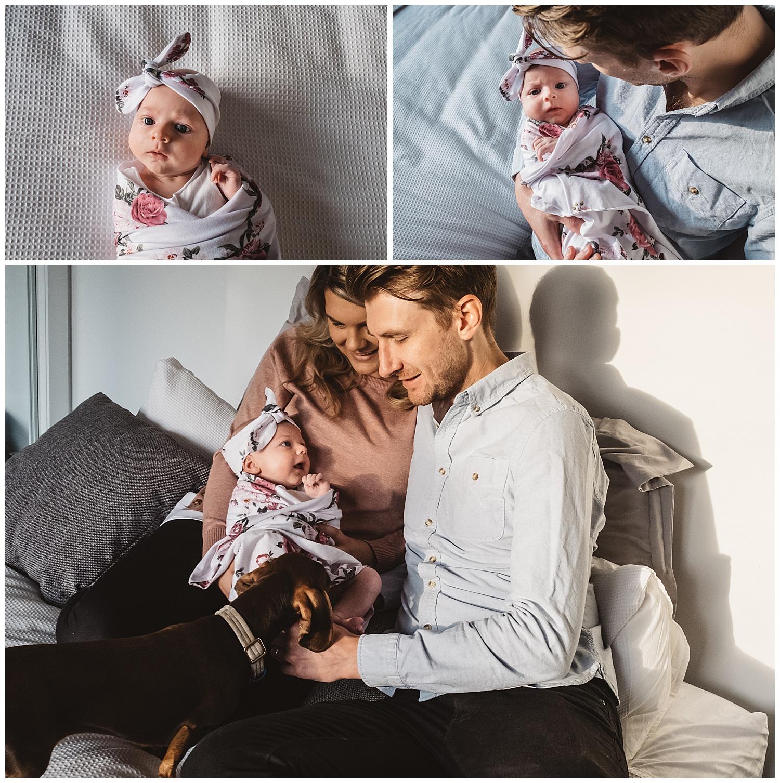 Newborn photos in Hampton and south east suburbs