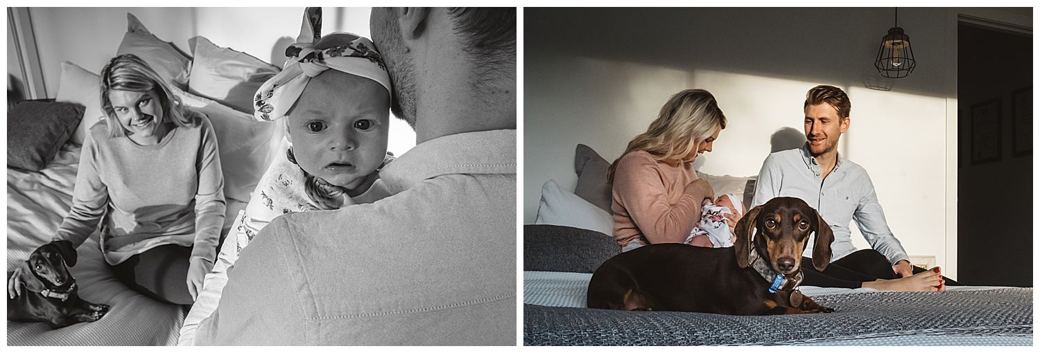 Newborn and baby photography in Hampton and south eastern suburbs