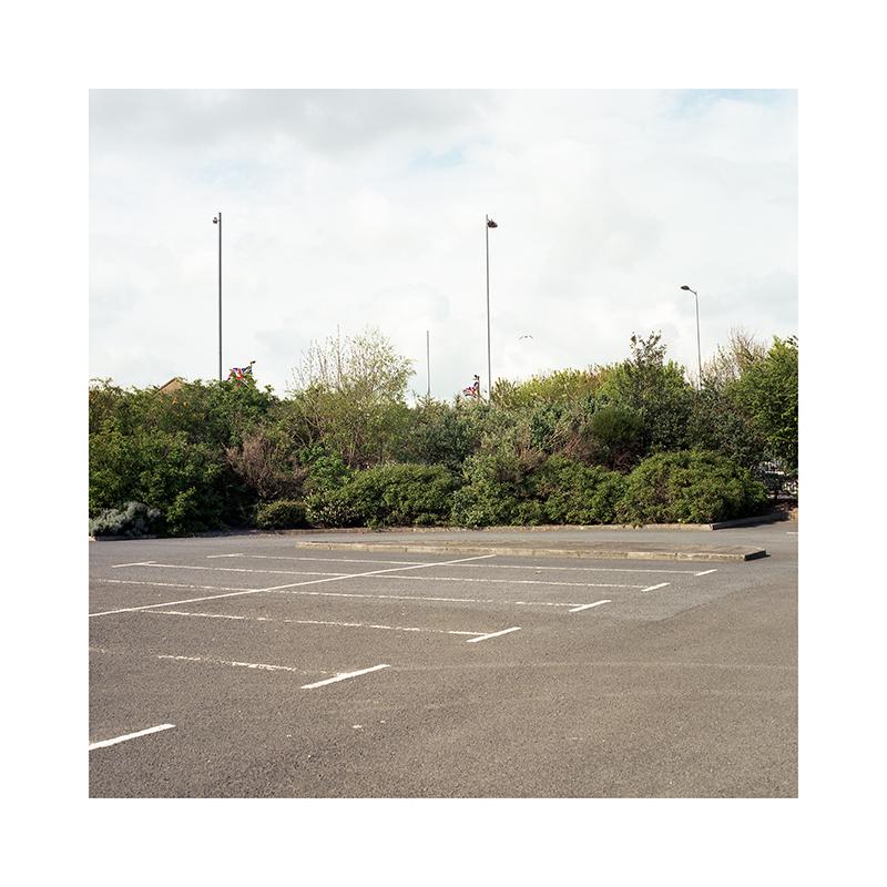 003-LoRes-SARobinson-Unionism-Overgrown.jpg