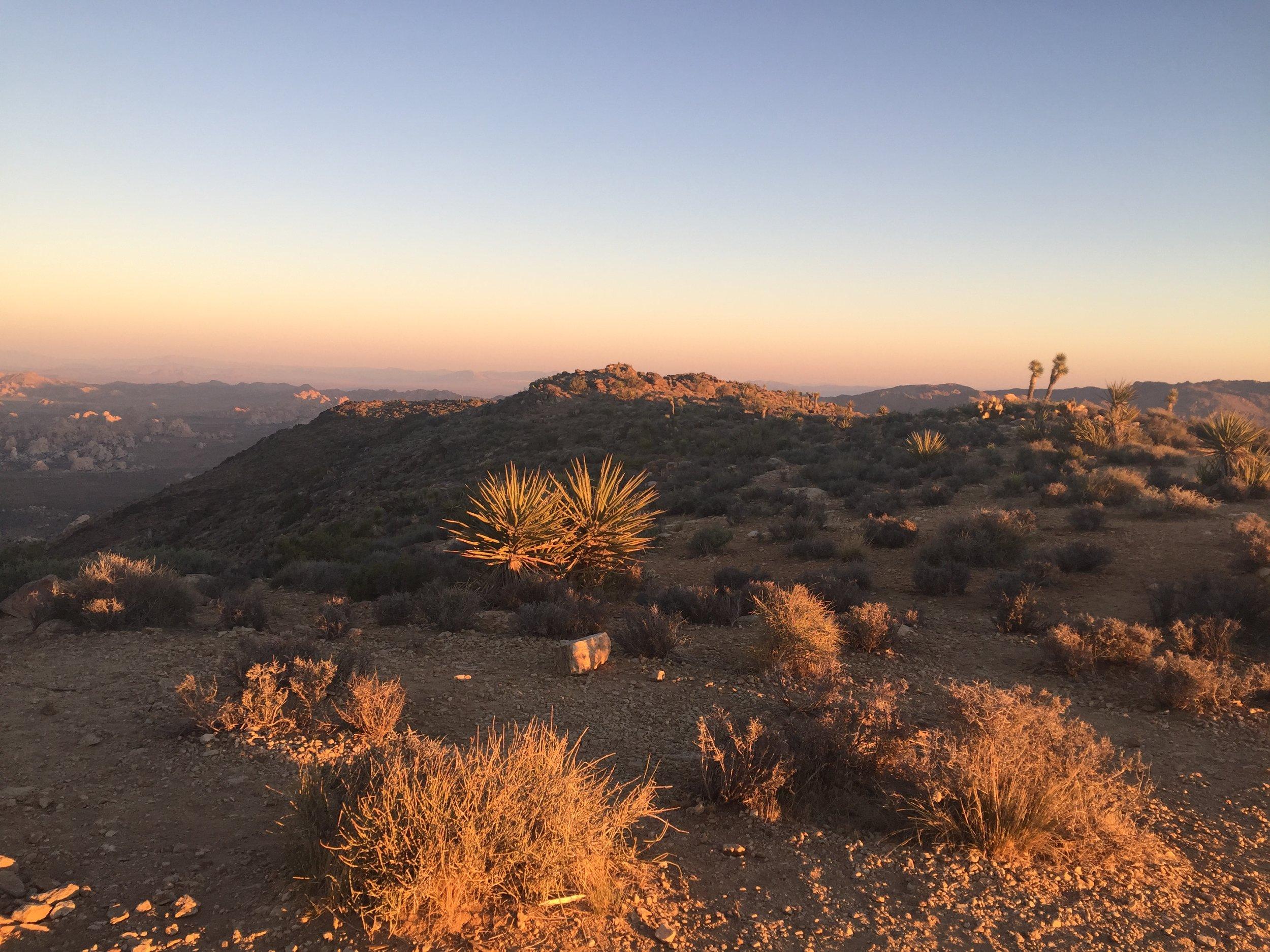 Sunrise at Ryan Mountain's summit, Joshua Tree National Park, California