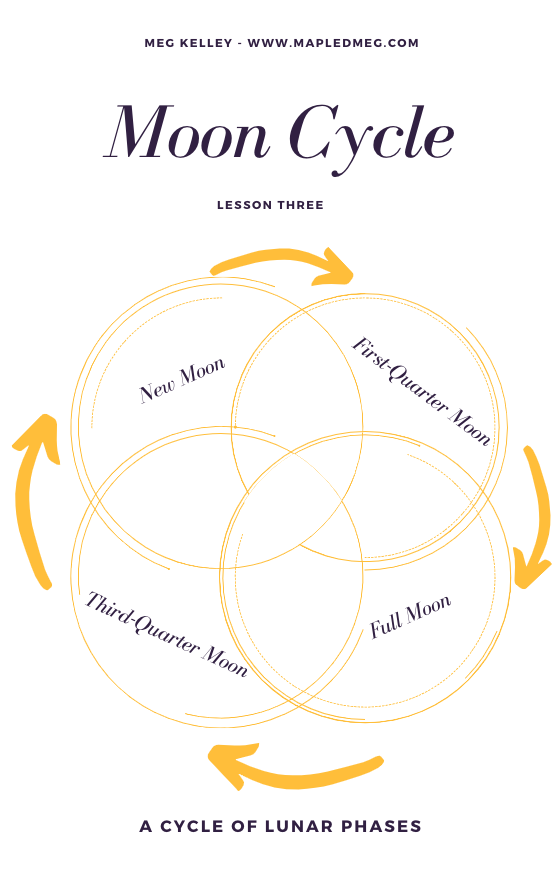 moon cycle.png