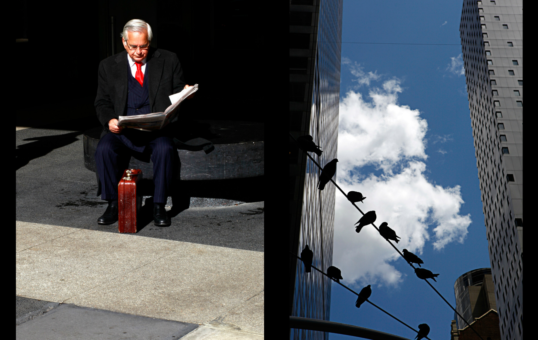 suit_birds.jpg