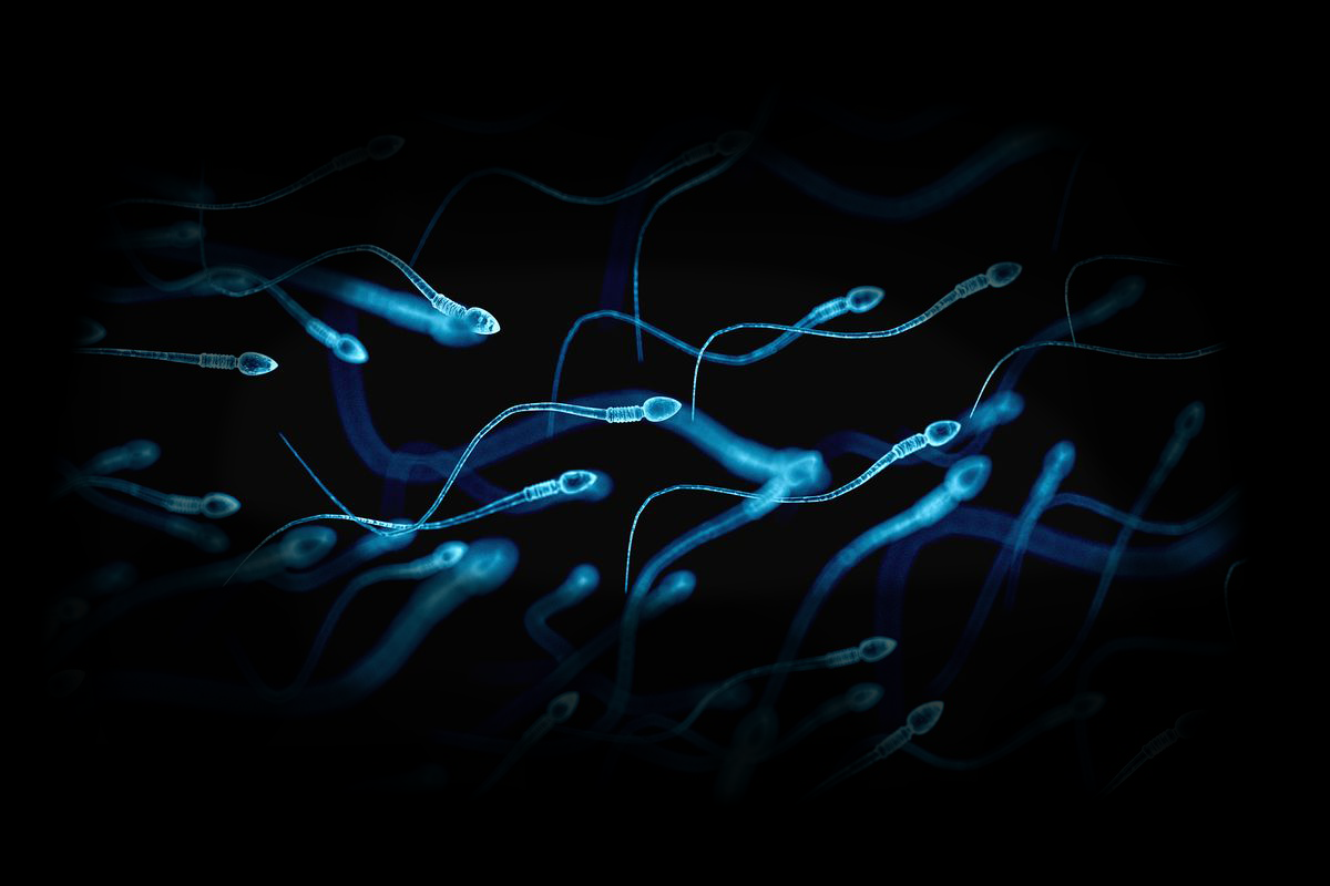 Hell did you know semen can prevent tooth decay? The facts are just endless. -