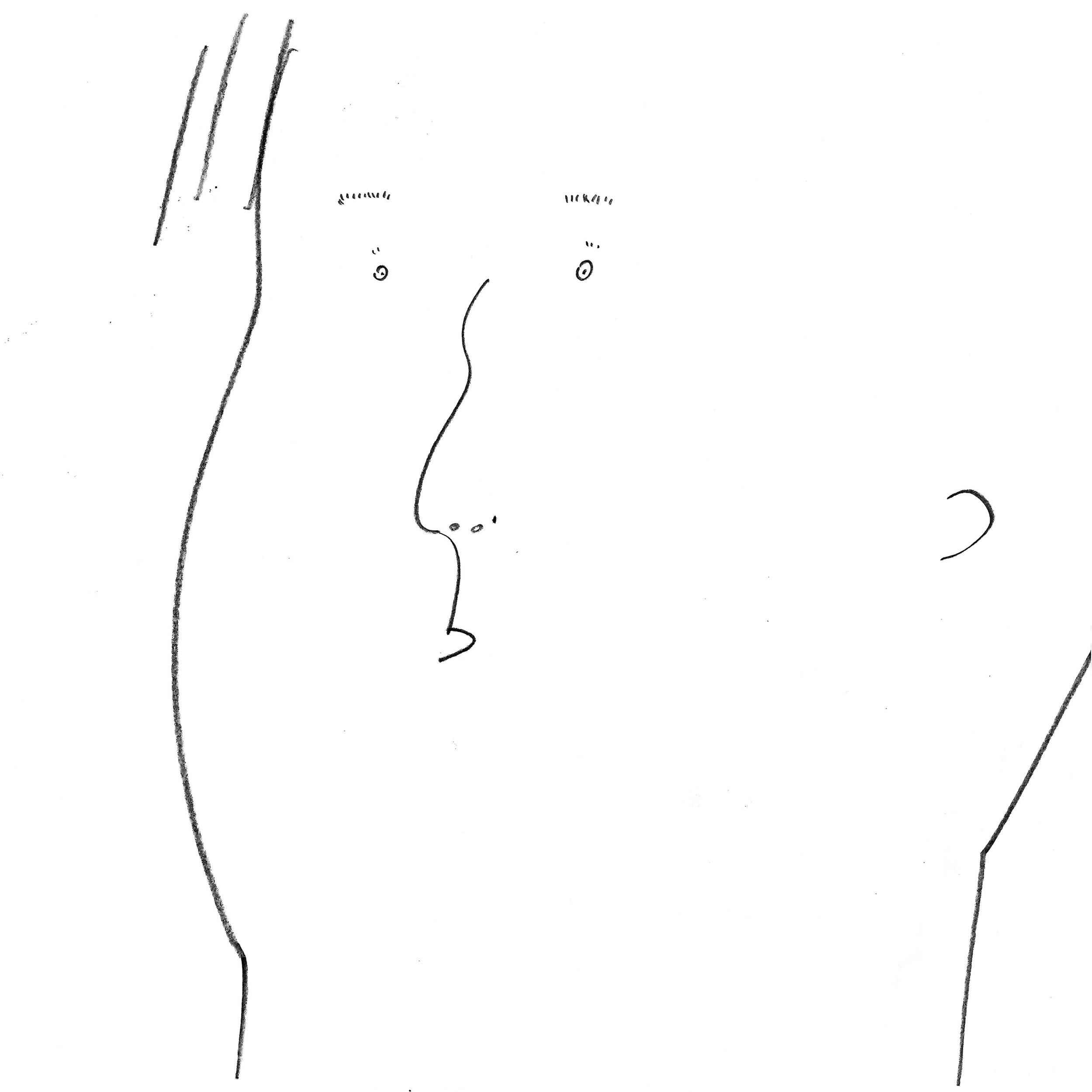 f.s 17.jpg