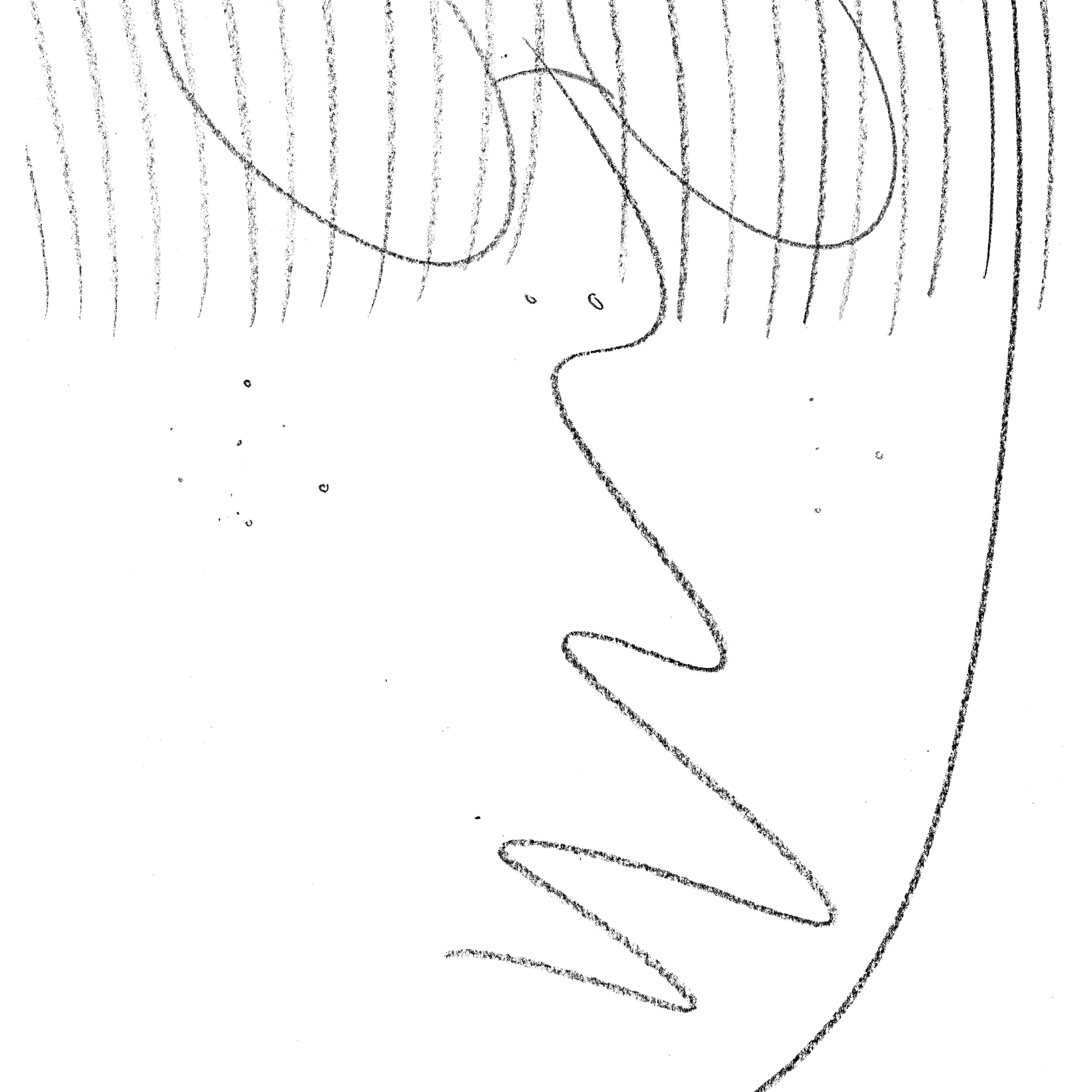 f.s 51.jpg