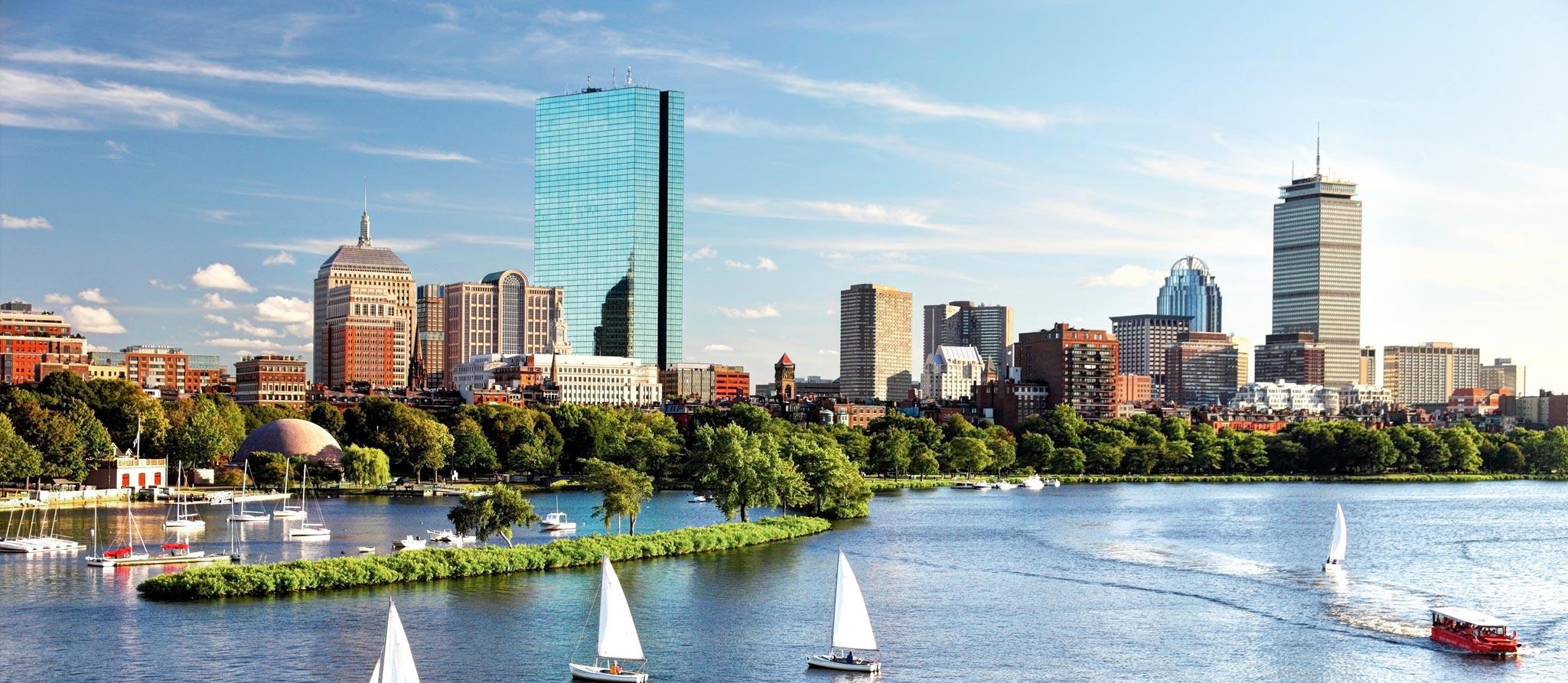 boston-adult-89c4.jpg