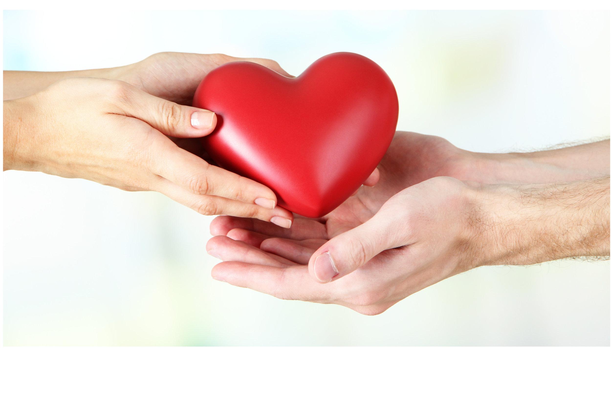 heart in hands 2.jpg