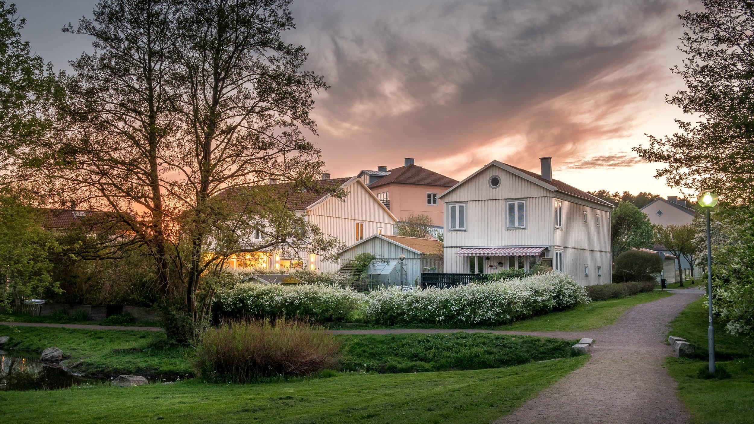 sunset-lights-the-houses-in-molndal-suburb-PF2VEUL.jpg