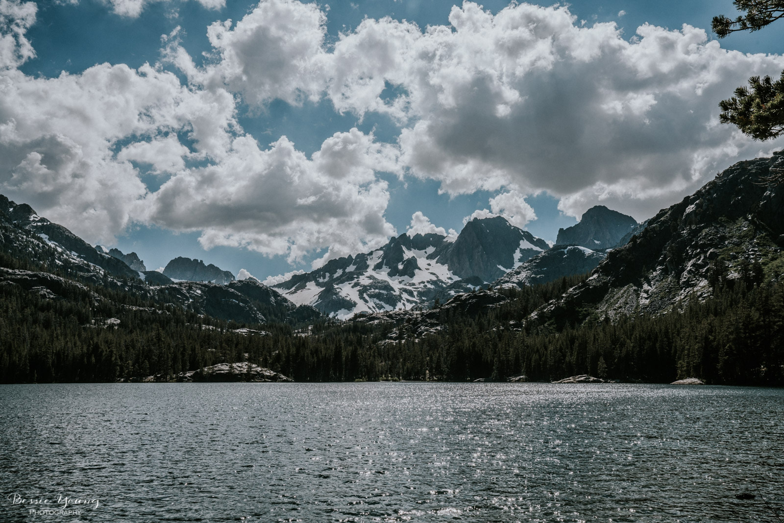 Ansel Adams Wilderness Backpacking day 1 2017 - Bessie Young Photography-11.jpg