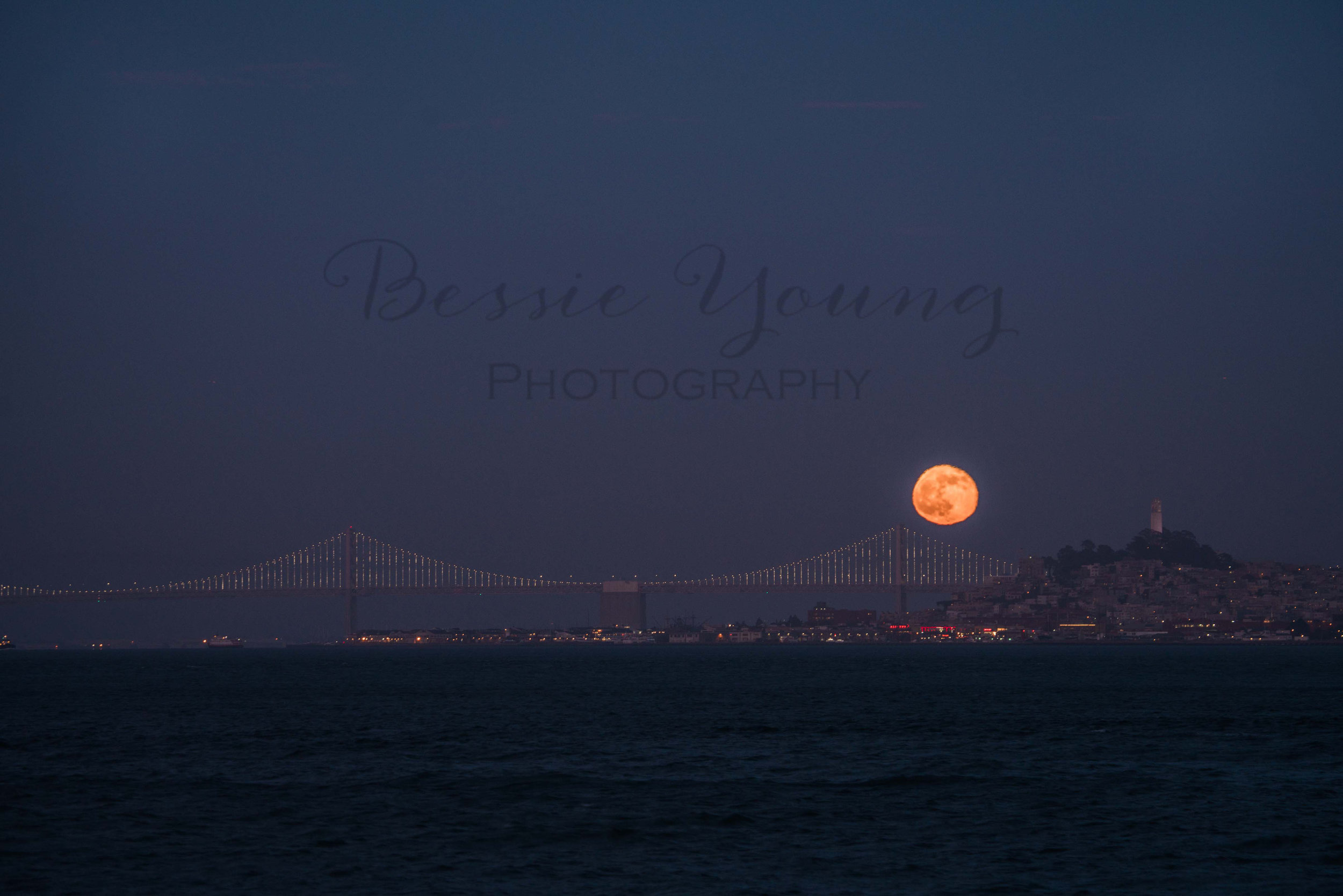 San Francisco 2016 - Bessie Young Photography-94.jpg