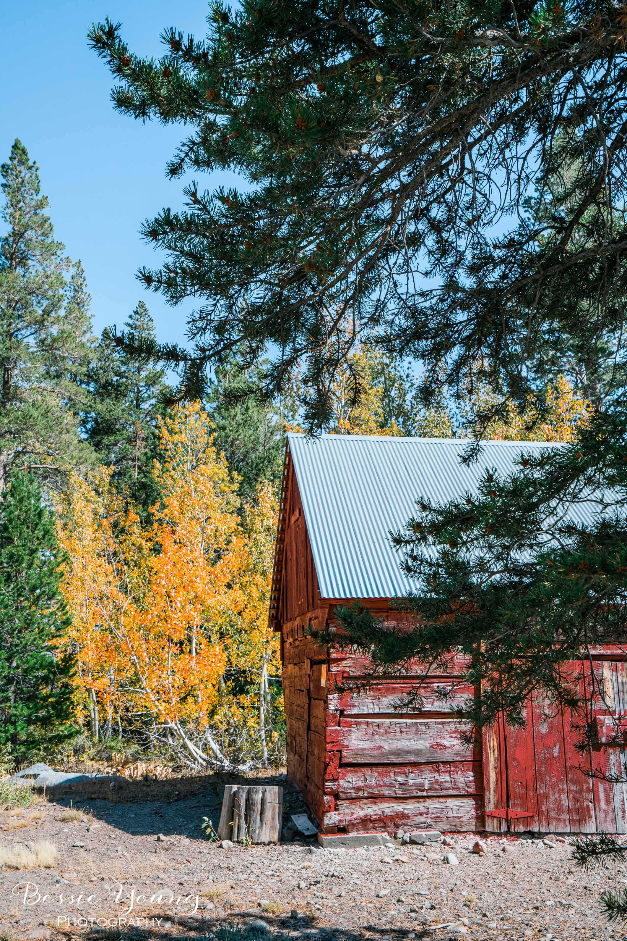 Hope Valley October 2016 - Bessie Young Photography-32.jpg