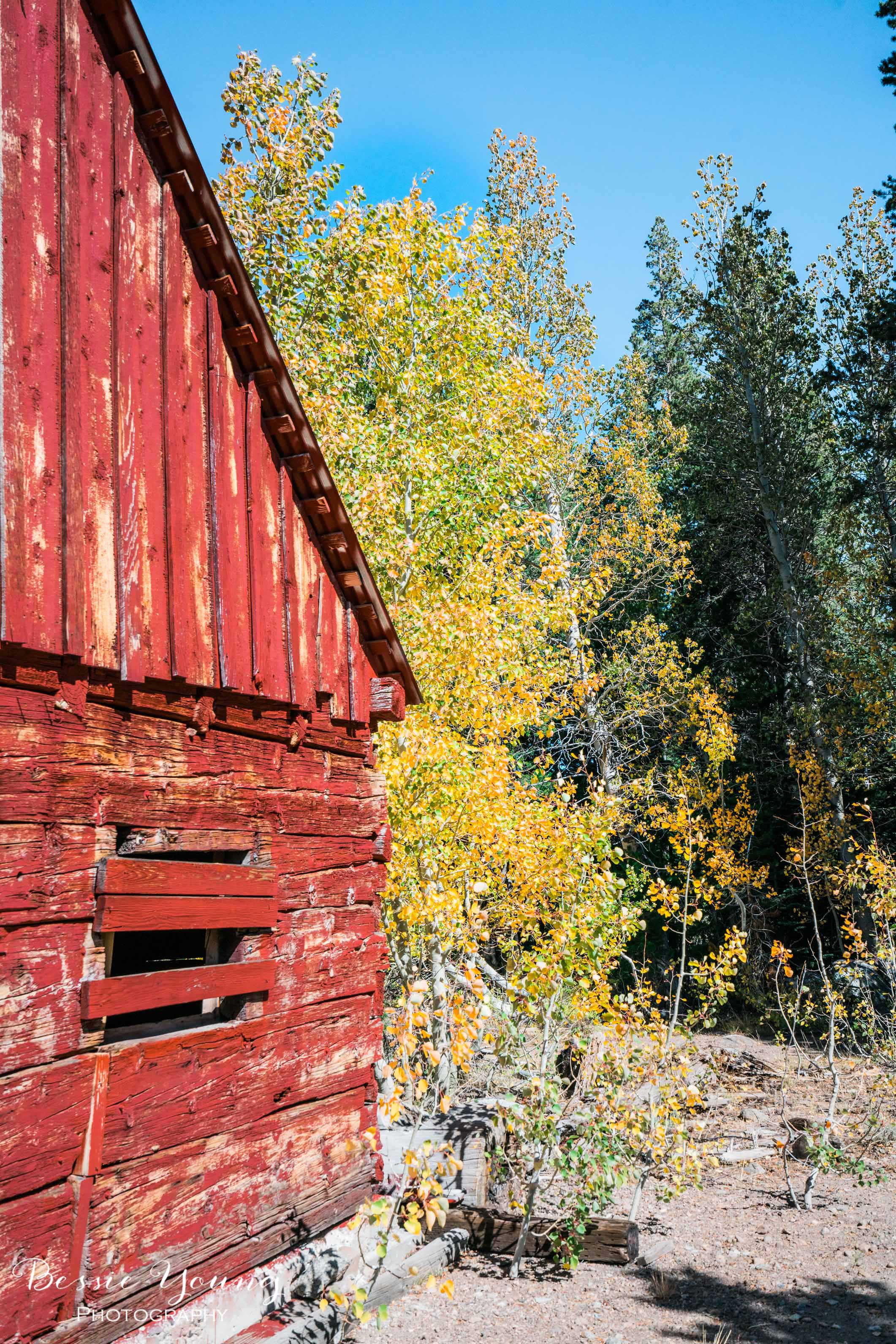 Hope Valley October 2016 - Bessie Young Photography-44.jpg